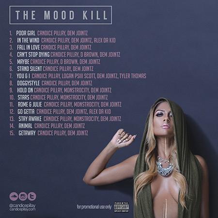 mk_THE-MOOD-KILL-BACK-WEB2